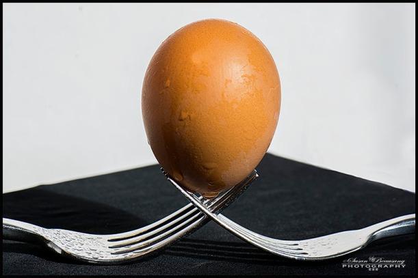 macro egg, forks