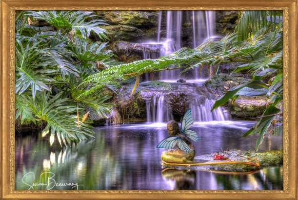 Selby Gardens, Sarasota FL