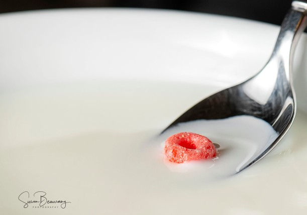 Fruitloop, lonely, bowl of milk, cereal, red fruit loop