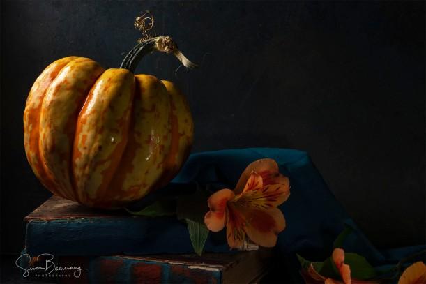 Gourd, Pumpkin, Halloween, Thanksgiving, Color Balance, 52 Week Blog